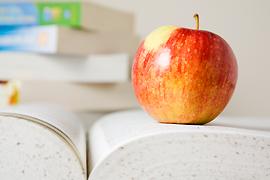 Zdjęcie ozdobne - charakter dekoracyjny - jabłko